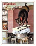 International baking powder Advertising Poster 1885