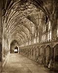 The Great Cloisters, Gloucester Cathedral (South Wall, looking W