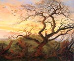 The crows Tree Caspar David Friedrich