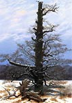 Oak tree in the snow Caspar David Friedrich