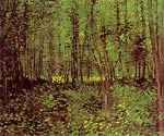 Trees and Undergrowth Vincent Van Gogh