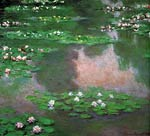 The water lilies Monet