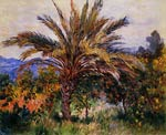A Palm Tree at Bordighera Monet