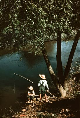 Boys fishing in a bayou, Louisiana 1940