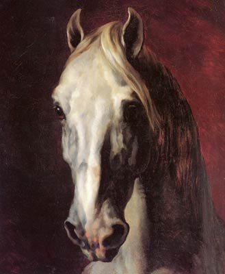 Head of a white horse Theodore Gericault