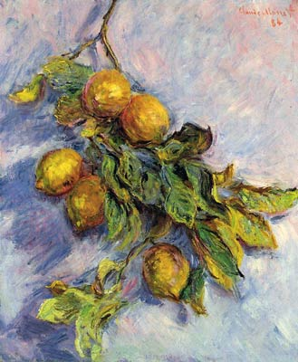 Lemons on a Branch Monet