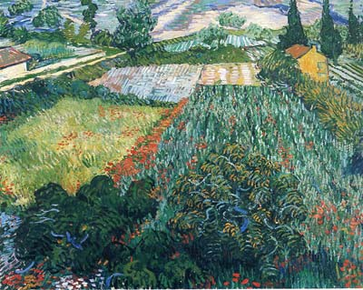 Field with Poppies in Saint Remy