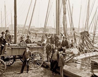 Unloading oyster luggers, Baltimore, Maryland 1905