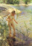 Reflexions Anders Zorn