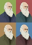 Charles Darwin Evolution Pop Art