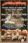 Join a sheep club Poster
