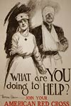 What are you doing to help? US WWI Poster