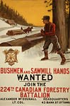 224th Canadian Forestry Battalion War Poster
