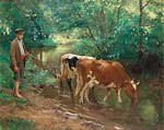 Young herdsman with cattle